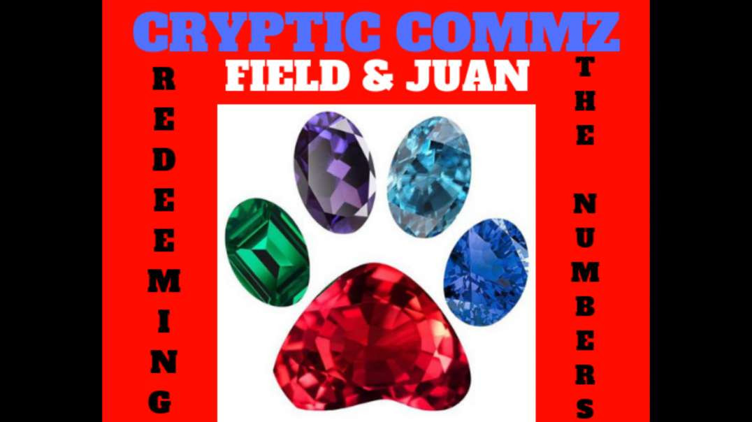 CRYPTIC COMMZ: FIELD AND JUAN - REDEEMING THE NUMBERS