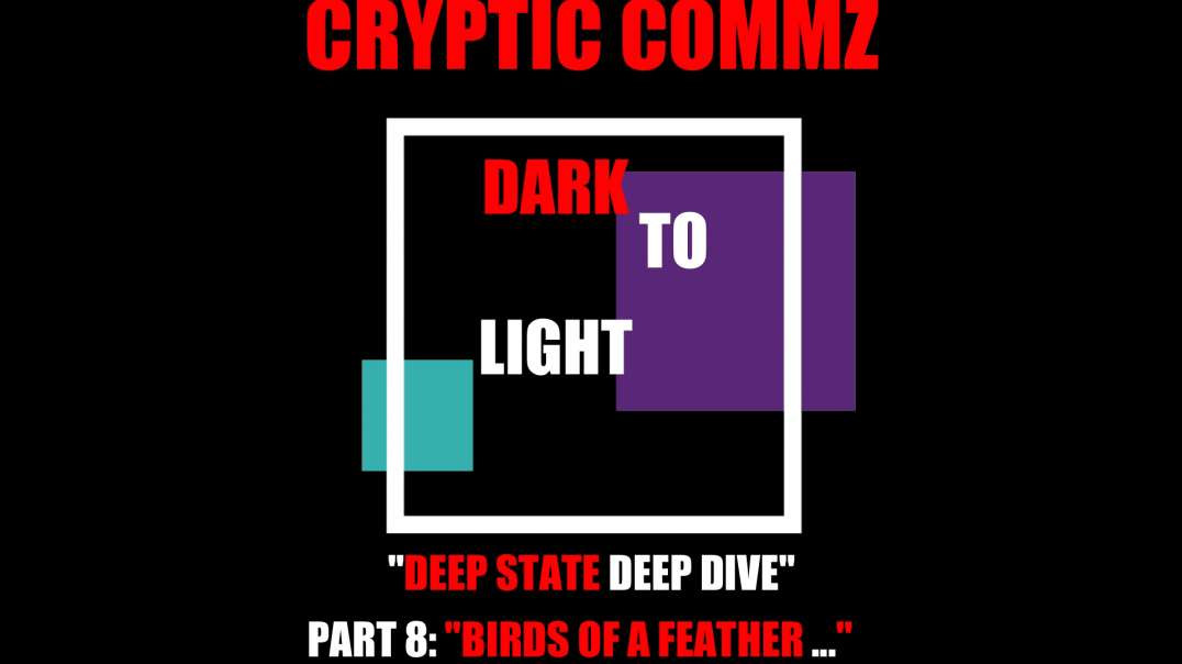 "CRYPTIC COMMZ DARK TO LIGHT DEEP STATE DEEP DIVE PT 8 -  ""BIRDS OF A FEATHER ..."""