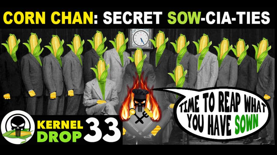 Hidden History explained through Corn Chan (1 - 40 memes)