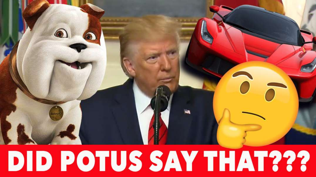 Did President Trump actually say that??? Cars, Numbers, and Every Dog has its Day.  You decide!!!