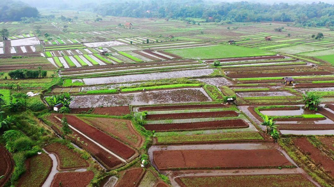 Drone Footage Of A Wide Farm Field